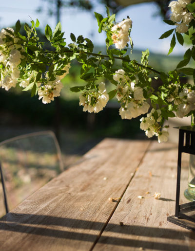 rosesinprovence